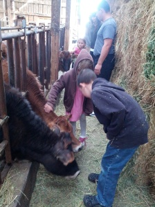 The kids at Farm Tour Day