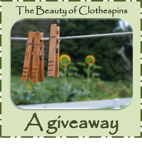 clothespins giveaway