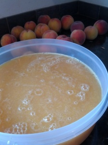 Peach/Plum Juice