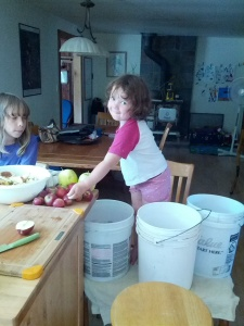 Even the little one can help make applesauce